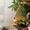 Пленочные потолочные обогреватели «ФлексиХИТ» - Изображение #4, Объявление #1226118