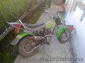 Honda nauty dax