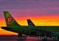 Авиаперевозки грузов в Новосибирск из Москвы срочные от 1 кг