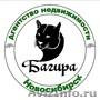 Аренда жилья в Новосибирске. А.Н. Багира