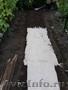 Биомат Сузой газон - Изображение #3, Объявление #1234201