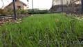 Биомат Сузой газон - Изображение #5, Объявление #1234201