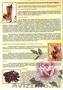 Растительные оздоровительные чаи. Кинкелиба. Западная Африка - Изображение #3, Объявление #1240273