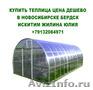 Купить теплица цена дешево в новосибирске бердск искитим
