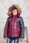 Зимняя верхняя одежда Оптом - Изображение #5, Объявление #1593246