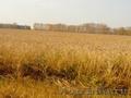 Продам два земельных участка общей площадью 848, 4 Га